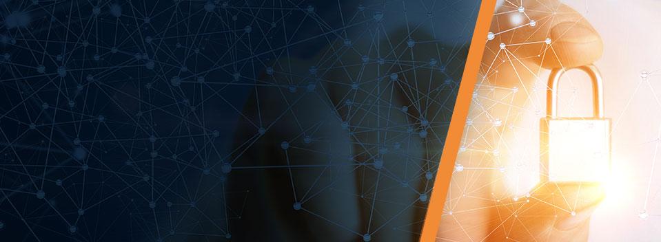 Privacy and Data Security 2020 - Copenhagen